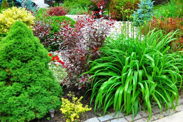 Toronto Gardens: Rocks to riches: Story of a garden