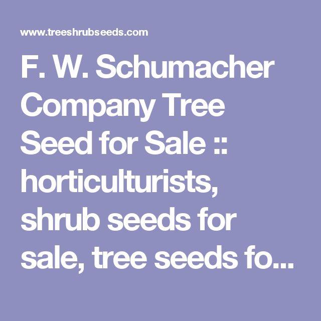 F. W. Schumacher Company Tree Seed for Sale :: horticulturists, shrub seeds for sale, tree seeds for sale, treeseed for sale, fruit seeds, pine seeds, spruce seeds, oak seeds, maple seeds, rare seeds, bonsai seeds, flower seeds, vine seeds, apple seeds