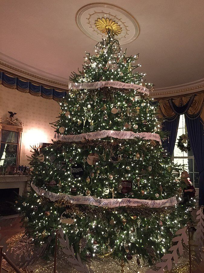 The Real Xmas Tree Vs Fake Xmas Tree Debate: Which Is Better?