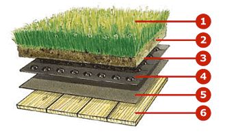 Components of a green roof Construction involves a series of functioning layers which, while retaining the necessary water to support the pl...