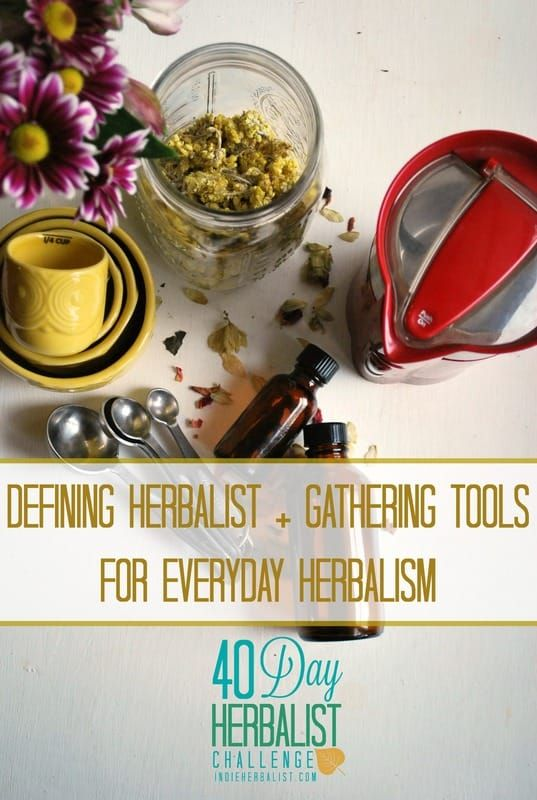 Defining Herbalist + Gathering Tools for Everyday Herbalism