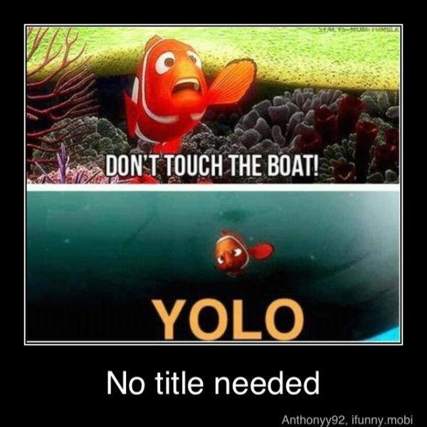 : Yolo, Laughing, Quotes, Findingnemo, Things, Disney, Funnies Stuff, Finding Nemo, Mottos