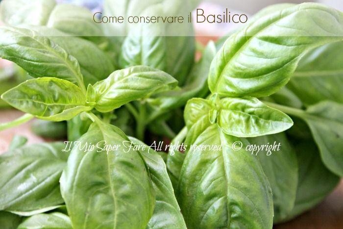 Conservare basilico fresco per l'inverno