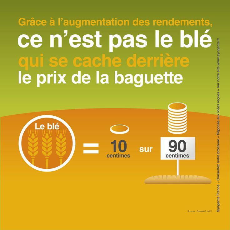 Infographie le prix du blé