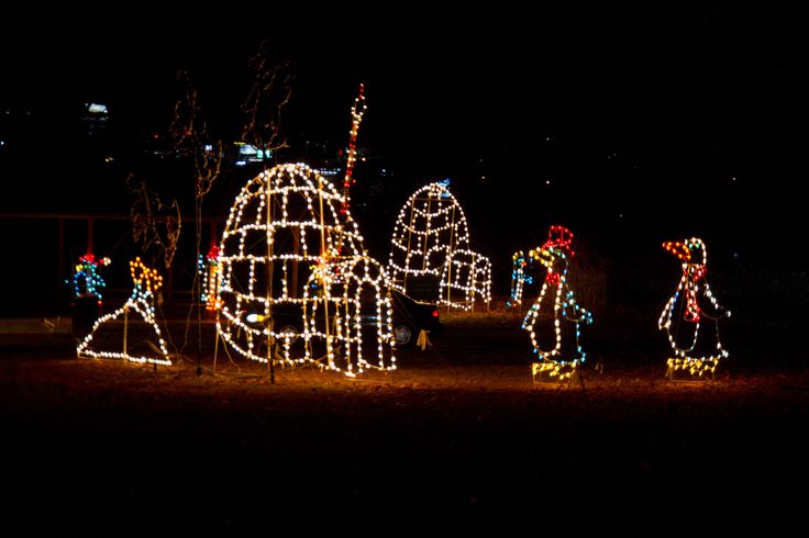 Nay Aug Park Christmas Lights