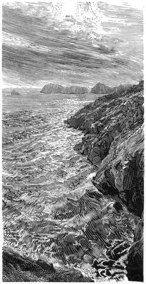 Simon Brett. Ramsey Island (wood engraving)