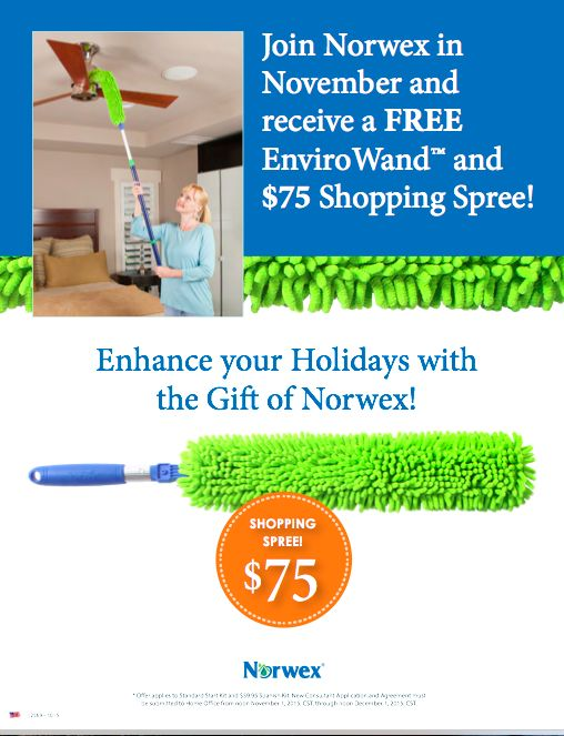 34 best Norwex - chemical-free cleaning! images on Pinterest - new vistaprint norwex