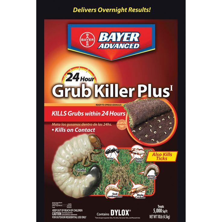 Great Garden Supply - Bayer Advanced 700740S 24 Hour Grub Killer Plus, Granules, 10-Pounds, $24.60 (http://www.greatgardensupply.com/products/bayer-advanced-700740s-24-hour-grub-killer-plus-granules-10-pounds.html)