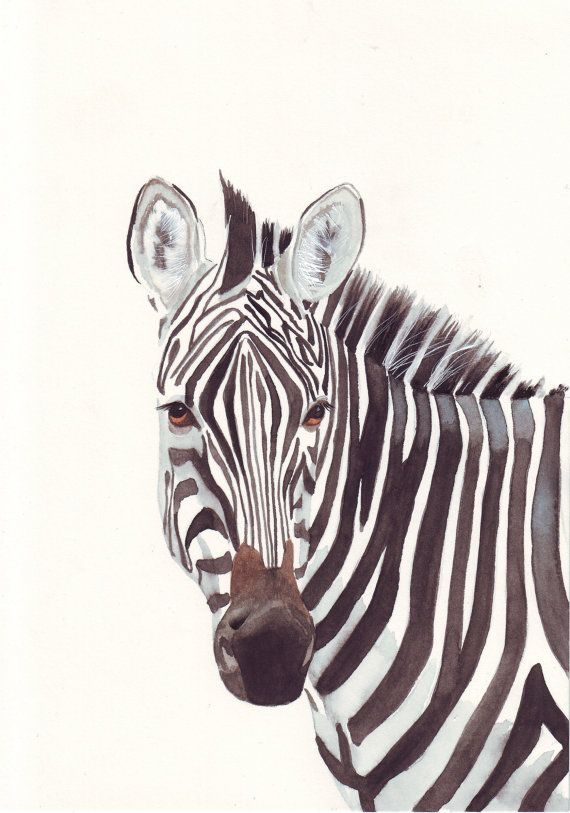 Zebras Paintings Pinterest • The worl...