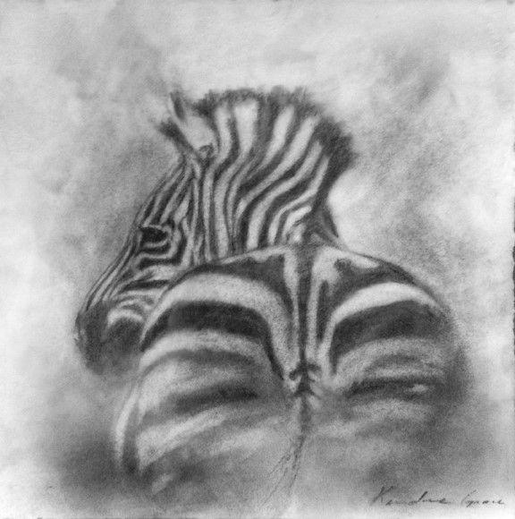Zebra Rump by Kindrie Grove #graphite #encasuticonpaper 8X8