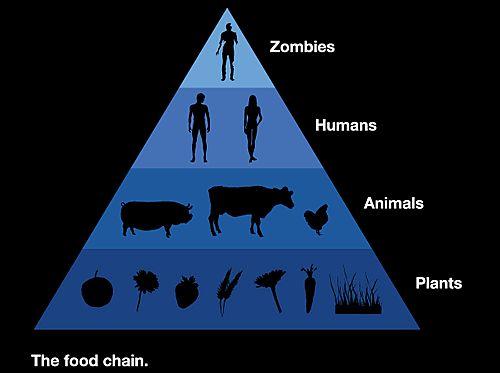 Cadena alimentaria con Zombies