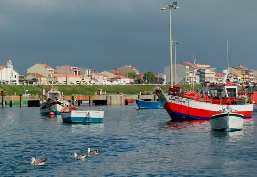 Póvoa de Varzim (fishing boats)