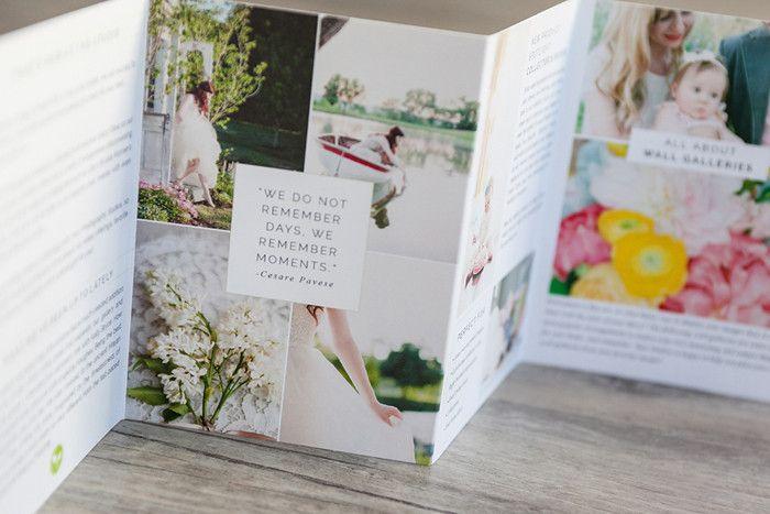 Marketing and Brochure Photoshop Template Sets for Professional Photographers - Wedding, Portrait, Seniors, Pets, Children Studio Newsletter | Design Aglow