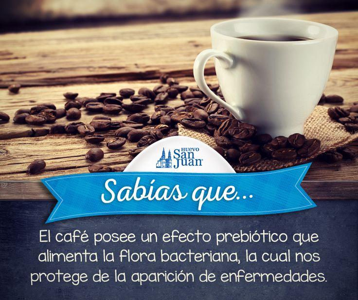 #Sabíasque #curiosidades #café #delicioso #Huevo #SanJuan