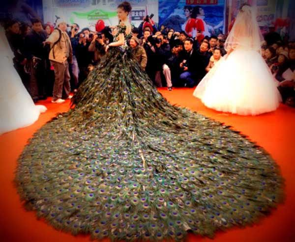 47 best truly awful wedding dresses images on pinterest ugly wedding culture expo held in nanjing china on saturday march 2009 the dress is composed of 2009 peacock feathers and required 8 craf junglespirit Choice Image
