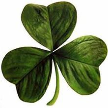 The Shamrock  Legend (dating to 1726, according to the OED) also credits St. Patrick with teaching the Irish about the doctrine of the Holy Trinity by showing people the shamrock, a three-leafed plant, using it to illustrate the Christian teaching of three persons in one God.[65] For this reason, shamrocks are a central symbol for St Patrick's Day.