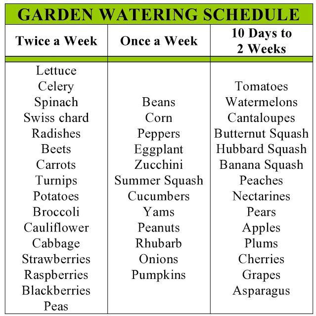 My Family Prepared: Garden Watering Schedule