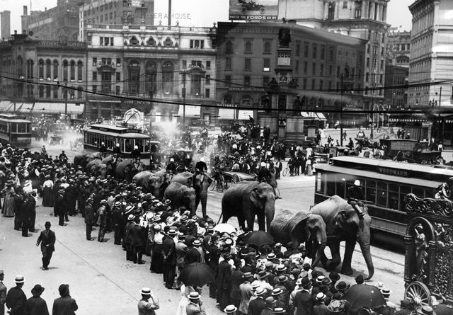Circus... in town! June 16, 1910. Woodward Ave., Detroit ( Detroit News Archive)