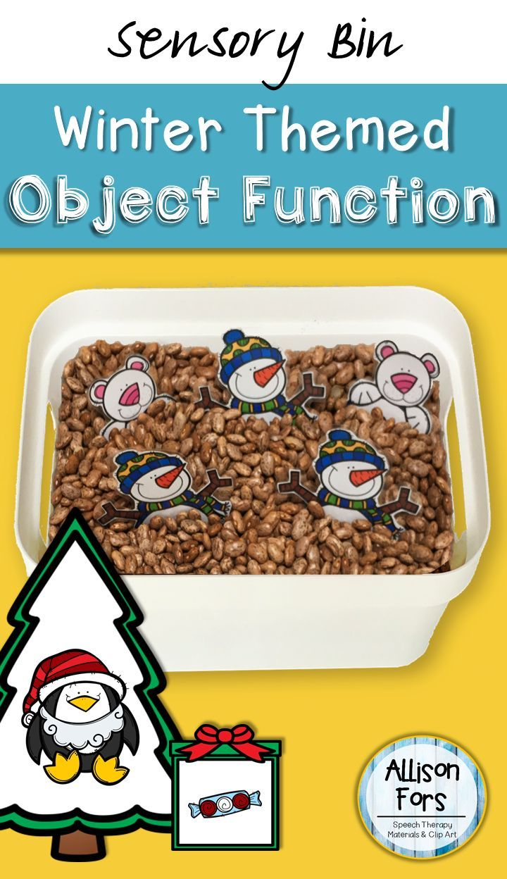 Target object function and winter vocabulary with this fun activity! This product was designed as a sensory bin activity but can also be used as flash cards with any game.