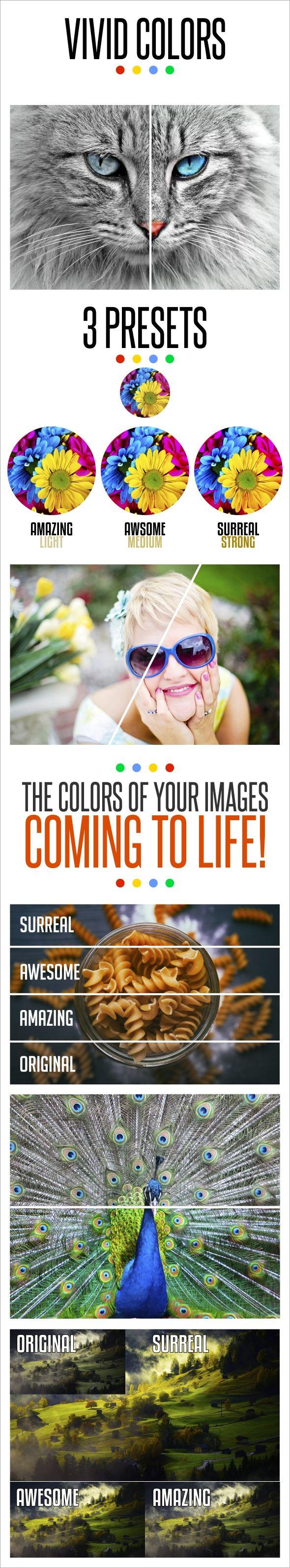 Vivid Colors Photo Effect. Download here: http://graphicriver.net/item/vivid-colors/16074162?ref=ksioks
