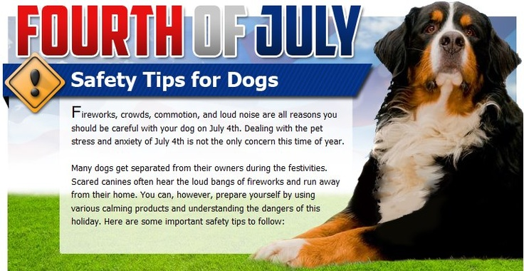 fourth of july safety quotes