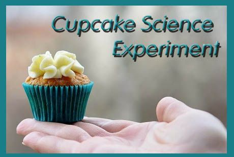 Fun Cupcake Baking Science Fair Project
