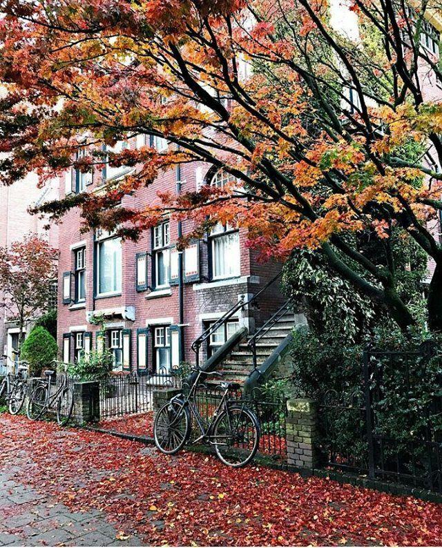 Amsterdam photo by IG katerinn