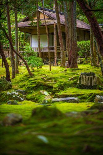 Kyoto's Moss Temple: Steve Jobs' Favorite Place in Japan