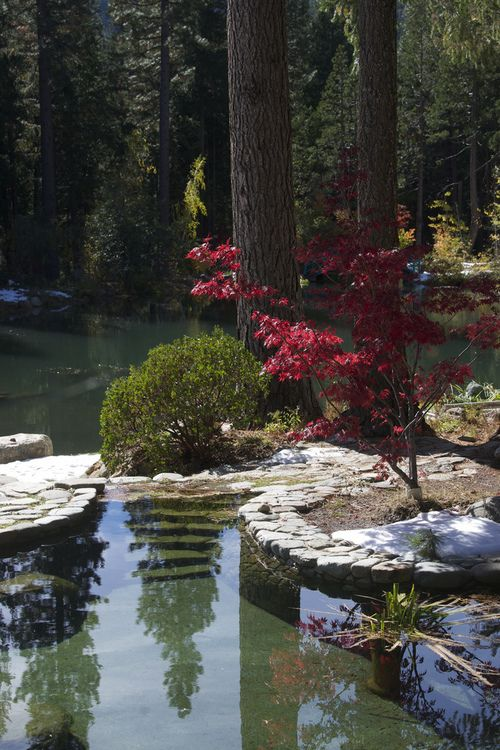 Big Springs Gardens in the Tahoe National Forest, Sierra Nevada Region