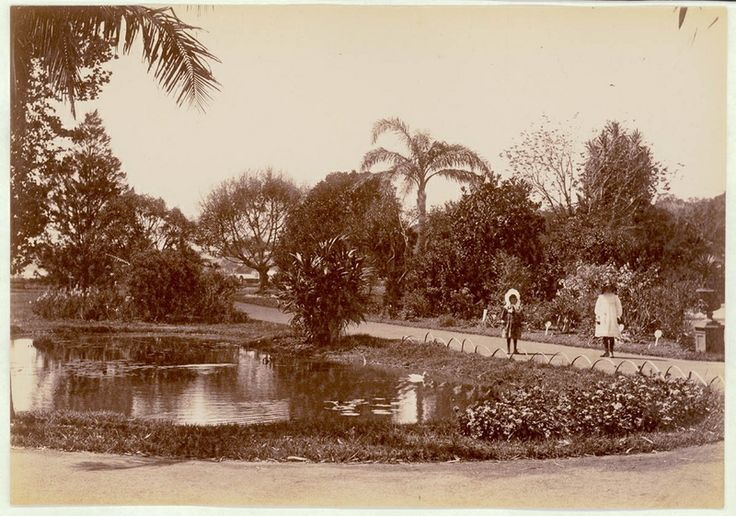Botanical Gardens, Sydney [showing pond and walkways], 1900-1910. PXE 711 / 464 http://acmssearch.sl.nsw.gov.au/search/itemDetailPaged.cgi?itemID=413781