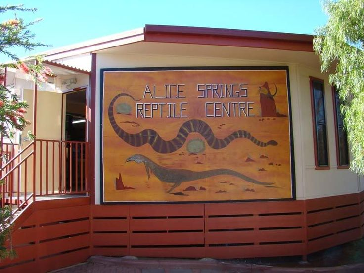 Image result for alice springs reptile centre