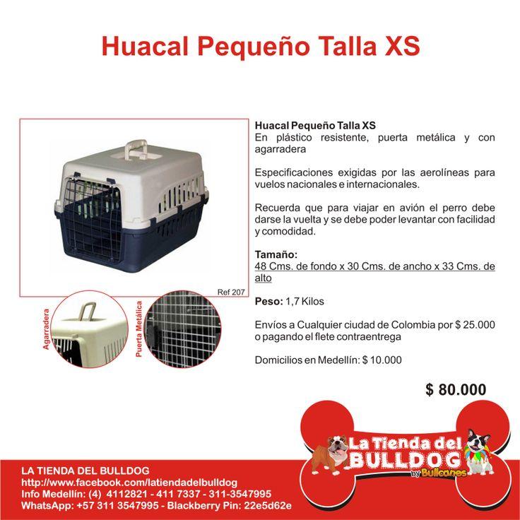 LA TIENDA DEL BULLDOG by BULLCANES Colombia Info: Cel y WhatsApp: 311-3547995 / Tel: (57+4) 4112821 / latiendadelbulldog@hotmail.com / https://www.facebook.com/latiendadelbulldog / Intagram_ @tienda_del_bulldog / @BULLCANES Bulldog puppies for Sale #bullcanes #bulldog #bulldogingles #bulldogfrances #latiendadelbulldog #tiendademascotas #bulldogcolombia #mascotas #pets #mascotascolombia #bulldogpuppy #colombia #biogroom #angeleyes Envios a cualquier ciudad