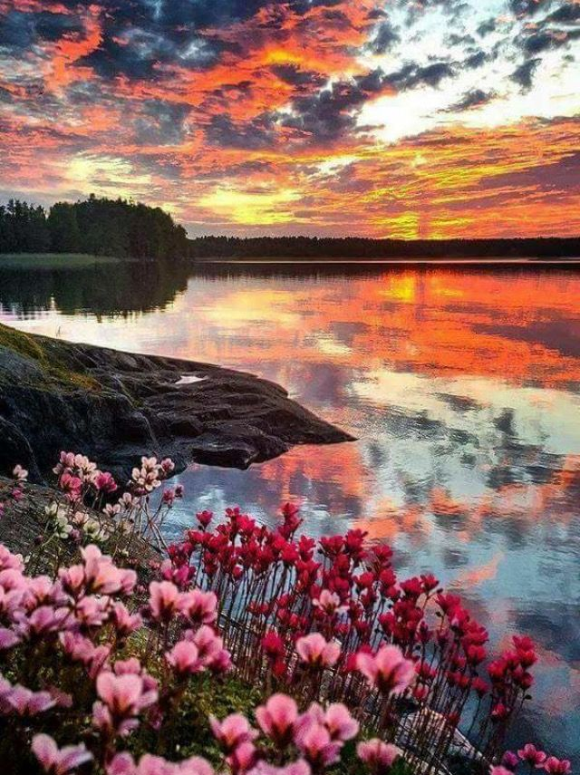 Norge🌸😍😊