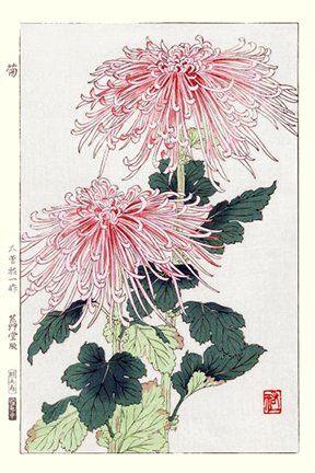Artist: Yuichi Osuga. Keywords: flower floral modern contemporary style woodblock woodcut print picture hanga japan japanese orient oriental asia asian art readercollection.com florist's chrysanthemum