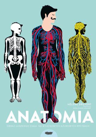 Anatomia. Obraz ludzkiego ciała na wyjątkowych ażurowych rycinach
