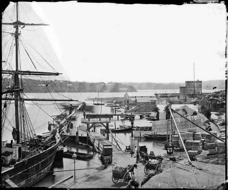 Horse punt from Bennelong Point in Sydney in 1870s. 🌹