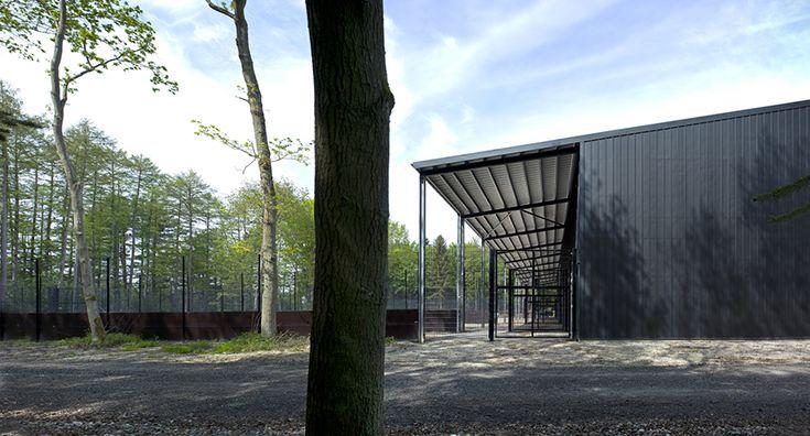Giraffe stable at Knuthenborg Park and Safari, Bertelsen & Scheving Arkitekter ApS, new construction