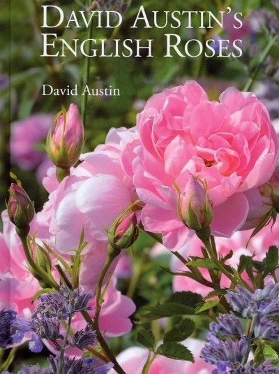 DAVID AUSTIN'S ENGLISH ROSES - DAVID AUSTIN (HARDCOVER) NEW