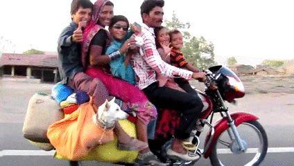 La plus grande famille à vivre ensemble vit en Inde : un homme, ses 39 femmes et 94 enfants. Rien que ça ! #funfacts