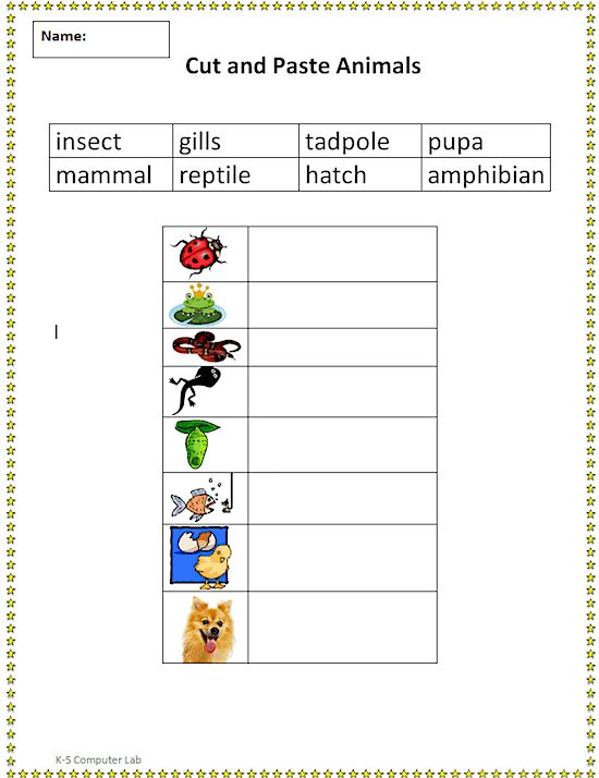 Cut and Paste Animal Vocabulary
