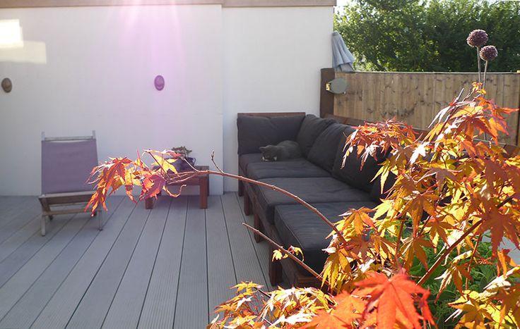 Composite Decking & Maus Lights (for the cat), North London Garden Design