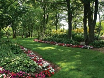 Plants for shade: Flowers Gardens, Gardens Ideas, Shades Flowers, Shades Gardens Plants, Front Yard, Old Houses, Backyard, Typical Shades, Back Yard
