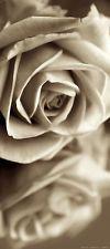 Carta da parati fotografica FTV 1508, motivo: fiabe Rose