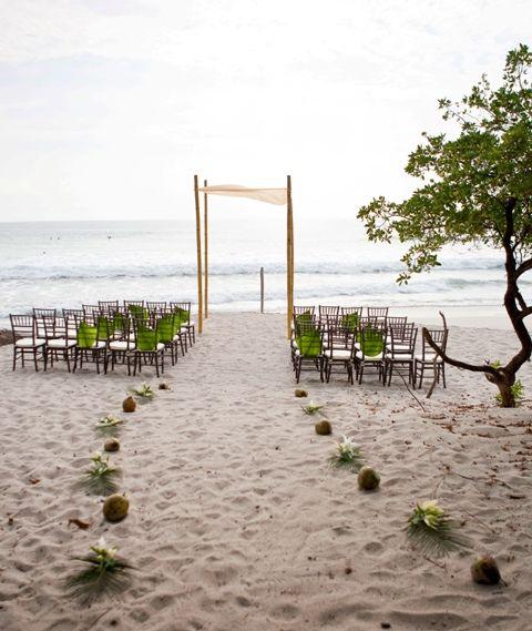 coconut walkway!!! love this idea