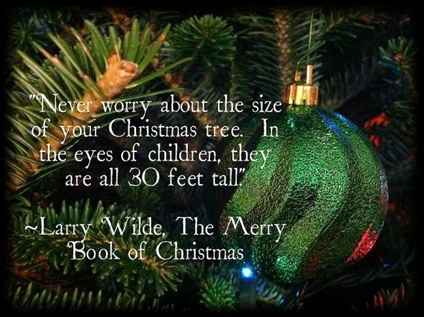 25 Unique Christmas Quotes Ideas On Pinterest: 25+ Best Funny Christmas Quotes On Pinterest