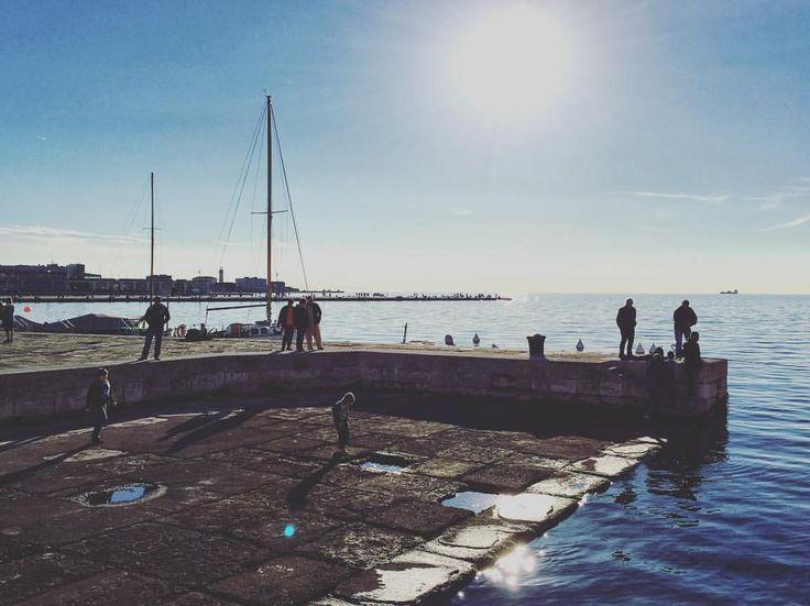 #ig_italy #ig_italia #igersitalia #igfriends_italy #gf_italy #fotografia_italiana #instaitalia #igfriends_friuliveneziagiulia #igersfvg #loves_friuliveneziagiulia #loves_italia #ig_friuli_vg #friuliveneziagiulia #igersts #volgo_friuliveneziagiulia #volgotrieste #loves_united_italia #wine#clouds #igers #europe #day #beautiful #instagood #instadaily #instamood #ig_global_life #centofoto #centofoto_ts #instagood #bestoftheday