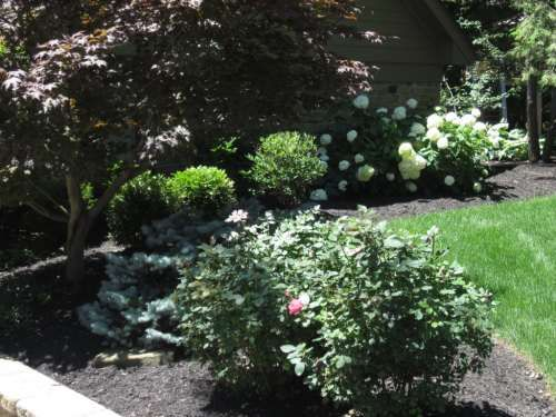 Landscaping On Side Of House : Side of house landscaping idea yard and garden