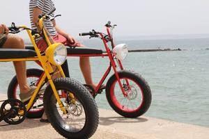 UNIMOKE V2 Urban Utility E-Bike