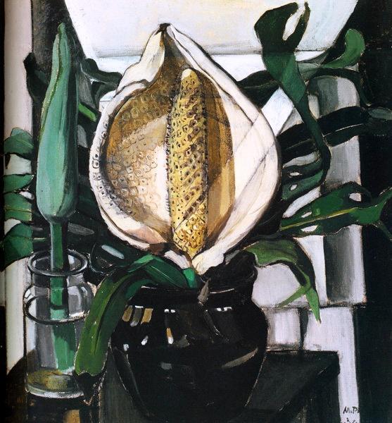 Monstera deliciosa,  by Margaret Preston  (1934)  from ashe