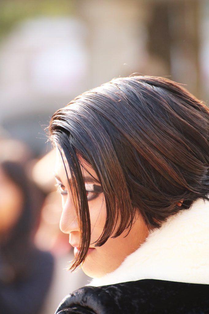 """こはる@林檎ロス症候群 on Twitter: """"これを出せと言われた気がして… #私が撮った一番美しいダルメシアを見てくれ #手下 #ダルメシア https://t.co/O7WdUNLF4M"""""""